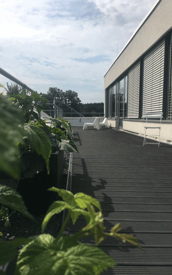 Our sundeck at our location in Gilching with home-grown fruit and vegetables